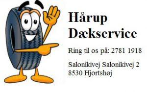 haarup-daekservice-logo-julekalender